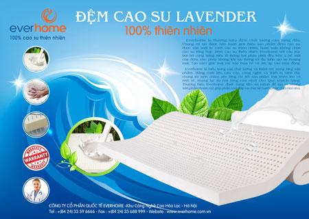 cao-su-lavender-450-2